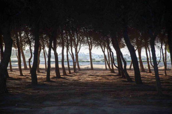 """Grabación de recursos para el documental de """"La cosecha de Los Lunares"""" en la playa de Palomares"""